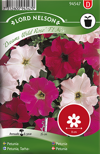 tarhapetunia Dreams Wild Rose Mix