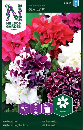 tarhapetunia Glorious F1, kerrottu